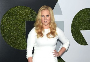 Amy Schumer wanted to pose nude for the Pirelli calendar.